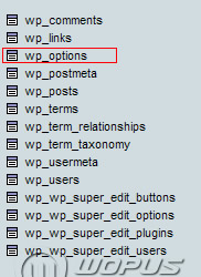 wp_options_1